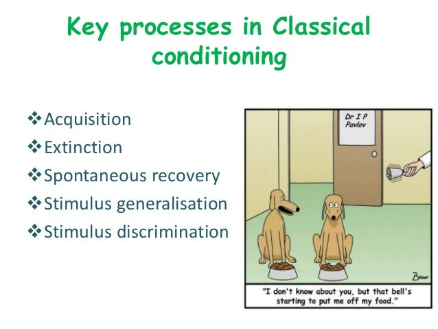 application of operant conditioning in organizations