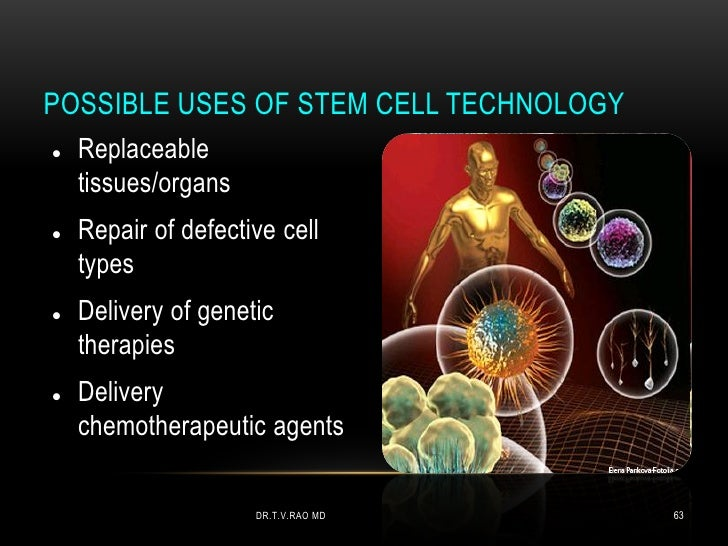 applications of stem cell technology pdf